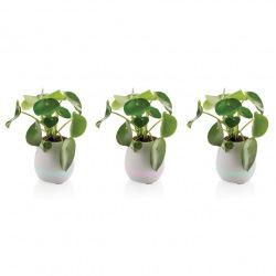 Loooqs, Flowerpot, bluetooth reproduktor, P326.973